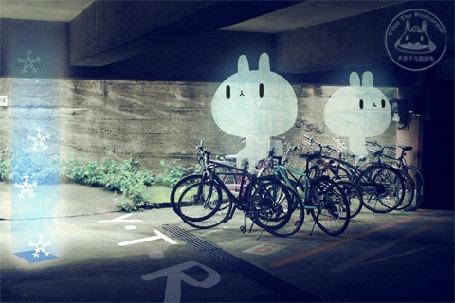 Анимация Прозрачные зайчики сидят на велосипедах, by Yoyo the Ricecorpse