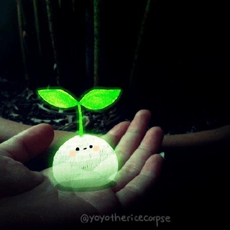 Анимация Светящийся шарик с глазами и ртом, из которого пробивается зеленый росток, на ладони, by Yoyo the Ricecorpse