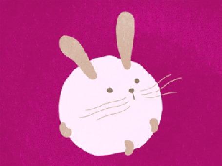 Анимация Появление на розовом фоне белого пухлого кролика