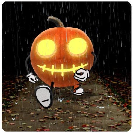 Анимация Тыква идет по дороге, усыпанной осенними листьями, под дождем, by Chris Timmons