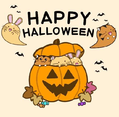 Анимация Два котика и кролик внутри тыквы с конфетами и листьями воле нее, на фоне летающего кролика, кота и летучих мышей (Happy Halloween / Счастливого Хэллоуина)