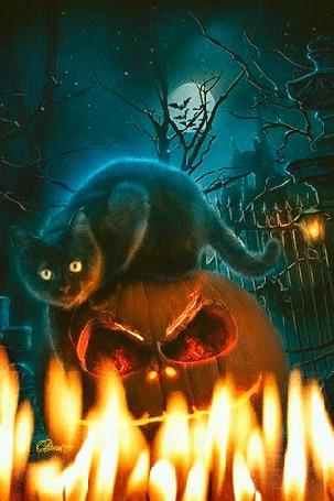 Анимация Черный кот сидит на тыкве перед горящими свечами, автор Brus777