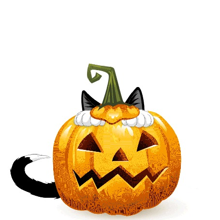 Анимация Кот Феликс выглядывает из праздничной тыквы
