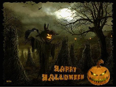 Анимация Чучело со светильником Джека вместо головы стоит на грядке среди стогов, рядом летает птица (Happy Halloween / Счастливого Хэллоуина), by Mira