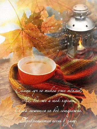 Анимация Чашка горячего чая в теплом шарфе горящий фонарь, падающий снег на фоне осенних листьев клена, (Солнца луч не такой уже теплый, но, все же и так хорошо. Иней ложтся на все осторожно, превращается осень в зиму.)