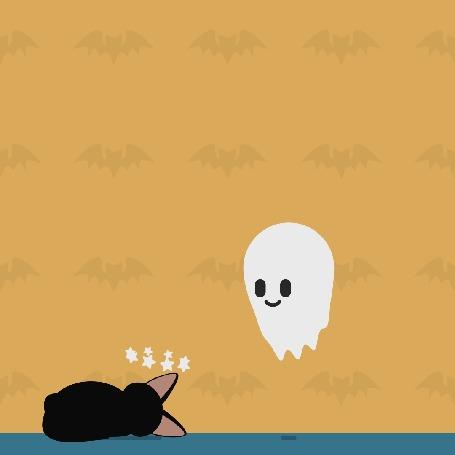 Анимация Мышка-привидение пугает кота до потери сознания