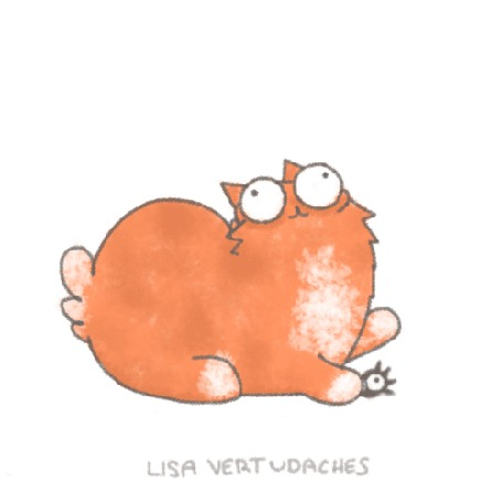 Анимация Рыжий кот пытается раздавить паука, by Lisa Vertudaches