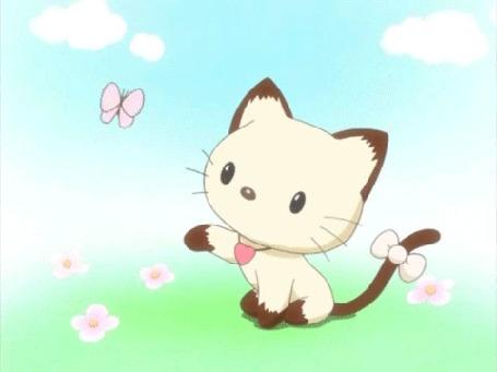 Анимация Жемчуг / Pearl с бантиком на хвостике наблюдает за бабочкой из мультсериала Здравствуйте Вселенной Китти / Hello Kitty Universe
