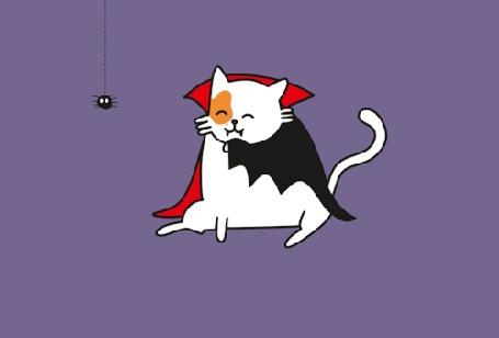 Анимация Рыже-белый кот-дракула с черным пауком на сиреневом фоне