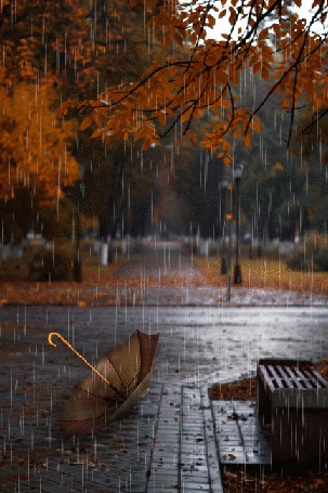 Анимация Зонт лежит на дорожке под дождем