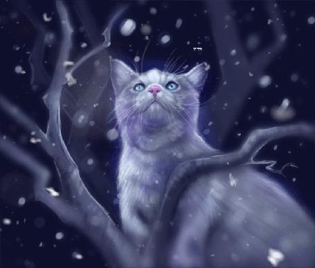 Анимация Кошка на дереве под падающим снегом, by Followthepaws