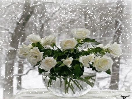 Анимация Белые розы в стеклянной вазе на столе под снегом