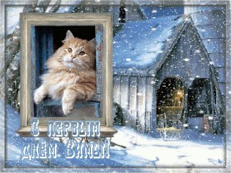 Анимация Кот выглядывает из окна на фоне дома (С первым днем зимы!)