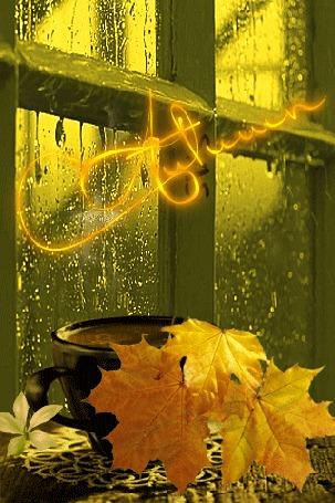 Анимация Чашка с кофе и осенние листья у окна, за которым идет дождь, (autumn / осень)