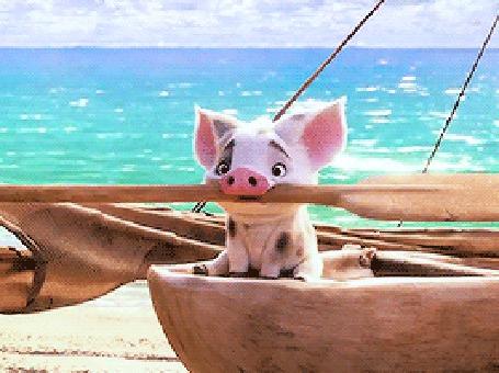 Анимация Маленький поросенок с веслом на лодке