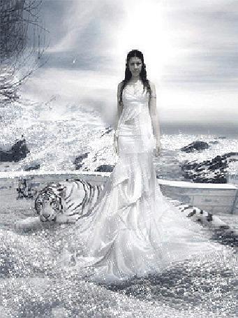 Анимация Девушка и снежный тигр зимой возле реки и гор