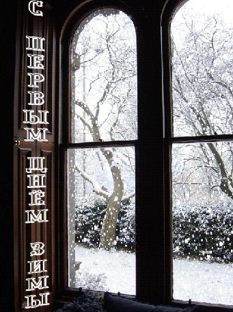 Анимация Снег идет за окном, падая на деревья и кусты (С первым днем зимы!)