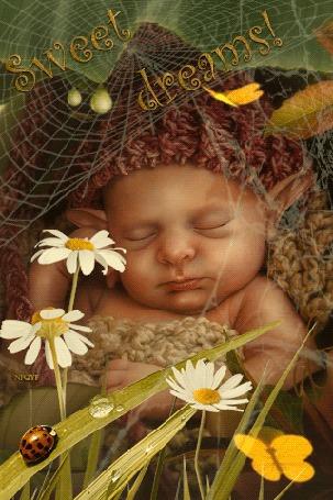 Анимация Спящий эльф в паутинке на фоне ромашек, бабочек и божьей коровки (Sweet dreams! NIQYF / Сладкие Мечты! NIQYF)