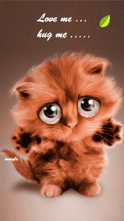 Анимация Милый котенок с большими глазами на фоне падающего листка (Love me, hug me / Люби меня, обними меня) от Marylа, by Stephanie VALENTIN