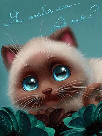 Анимация Милый котенок с голубыми глазами на фоне цветов (Я тебя лю. А ты?)