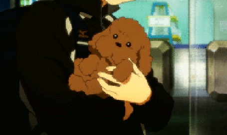 Анимация Щенок на руках парня, аниме Yuri on Ice / Юри на льду