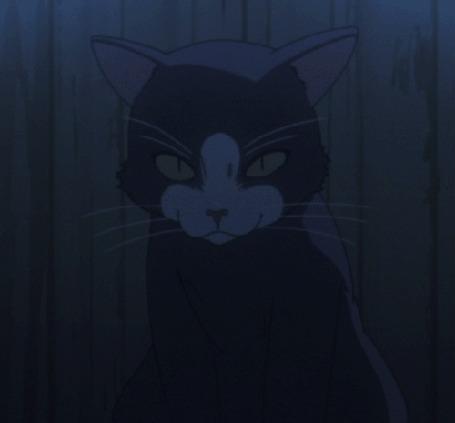 Анимация Куронэко / Kuroneko из аниме Принцесса немертвых: Красная хроника / Shikabane Hime: Aka