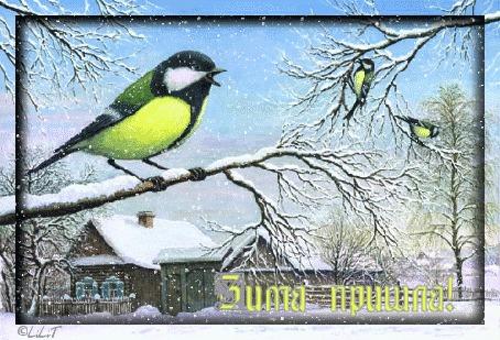 Анимация Синички на ветках деревьев зимой на фоне домов, (Зима пришла)