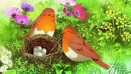 Анимация Птички сидят у гнезд с яйцами, аниме Невеста чародея / The Magicians Bride / Mahou Tsukai no Yome