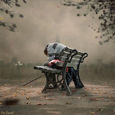 Анимация Мужчина спит, сидя на скамейке, под падающими осенними листьями и дождем, исходник Ionut Caras