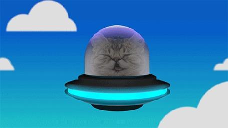 Анимация Кот в летающей тарелке летит по небу