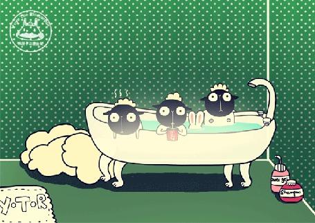 Анимация Белый кролик и трое овечек принимают ванну, by Yoyo The Ricecorpse