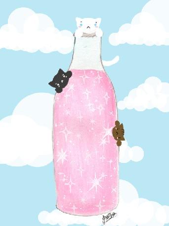 Анимация Трое котиков на бутылочке лимонада, by jessthechen