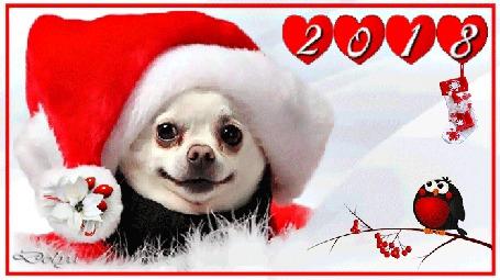 Анимация На снегу лежит собака - символ 2018 года в новогодней шапке. Рядом, на ветке, сидит снегирь. (С Новым Годом и Рождеством)