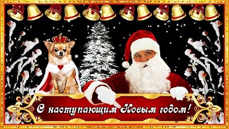 Анимация Санта и собачка поздравляют с наступающим Новым Годом