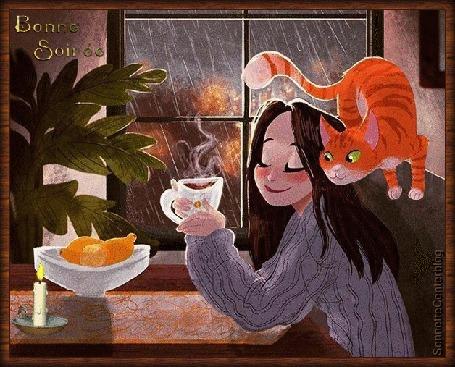 Анимация Довольная девушка пьет чай, за ней рыжий кот, а за окном идет дождь, (Bonne soir / Добрый вечер! )