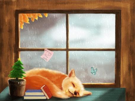 Анимация Спящая лисичка на столе возле книжек и горшочка с елочкой, рядом порхает бабочка, на фоне окна, за которым идет осенний дождь, с прилепленным к раме розовым стикером с надписью Merry Xmas 2016 / С Рождеством, by phamtung1
