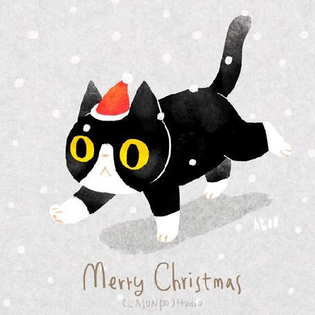 Анимация Кот в шапочке Санта-Клауса идет по снегу / Merry Christmas, by ABOO YANG
