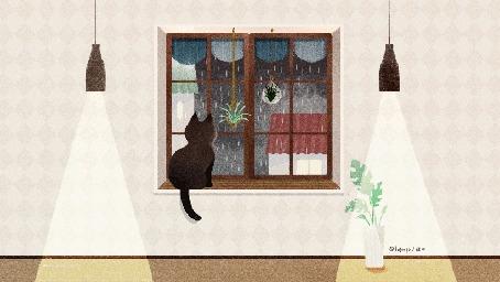 Анимация Кот сидит на подоконнике и смотрит на дождь за окном, by ABOO YANG