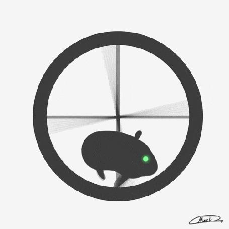 Анимация Бегающий хомяк в колесе, by maskman626
