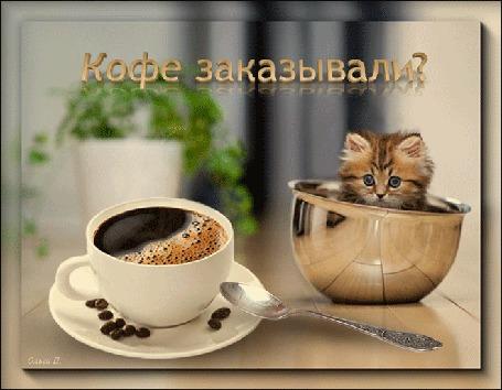 Анимация Кружка с горячим кофе и чашка с котенком на столе (Кофе заказывали? ), by Ольга П
