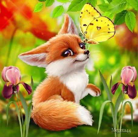 Анимация Лисенок с бабочкой на носу среди цветов, by Megeta 44