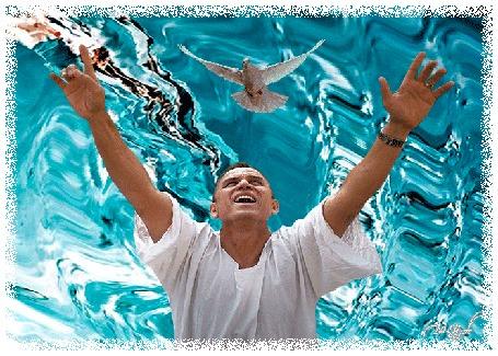 Анимация На фоне воды мужчина поднял руки вверх к небу, над ним парит голубь