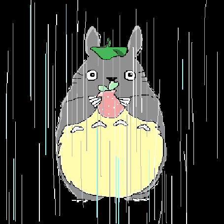 Тоторо под дождем