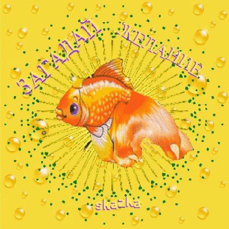 обращении золотая рыбка гиф анимация закончу получение