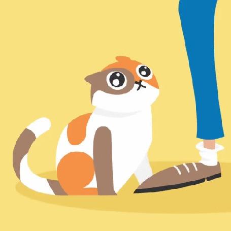 Анимация Кошка трогает лапой ногу мужчины и мяучит, by blinktower