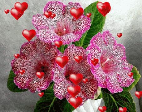 Анимации красивые, природа, цветы, Анимации, гифки, гиф анимации ...