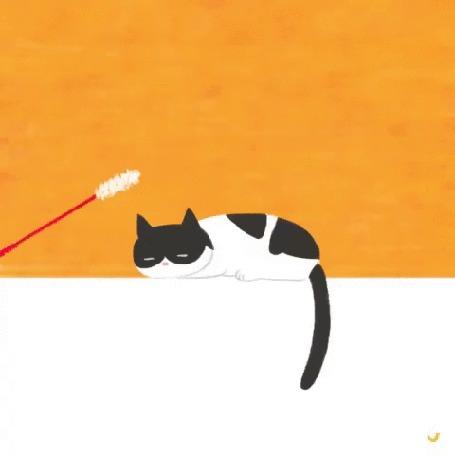 Анимация Кот дергает хвостом, когда ему стучат по голове дразнилкой, by kimerry