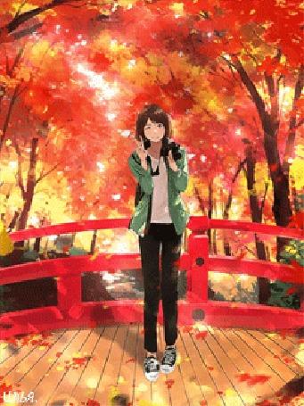 Анимация В один из теплых осенних солнечных дней, в одном из местных лесопарков, где воздух был наполнен свежестью и прохладой, а осенняя красная, коричневая и светло-желтая листва кружилась и сплошным ковром ложилась на землю и в котором присутствовали чарующие звуки природы и журчащего лесного ручья, протекающего под мостом, где опавшие листья, словно разноцветные кораблики, плыли по течению, здесь на мосту юная девушка лет двадцати с фотоаппаратом в руках фотографирует все происходящее вокруг