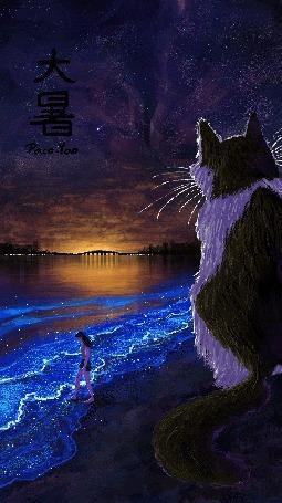 Анимация Огромная кошка и девушка на морском берегу ночью