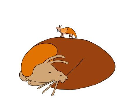 Анимация Маленький слизняк прыгает на большом, by Maquenda
